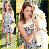 nikki reed designs dog collar & leash to benefit aspca