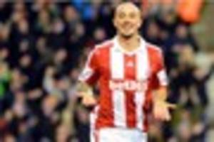 Mike Pejic: Big night for Stephen Ireland and Charlie Adam at...