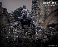 weekly recap: witcher 3 1080p controversy, xbox sales fall, destiny house of wolves revealed